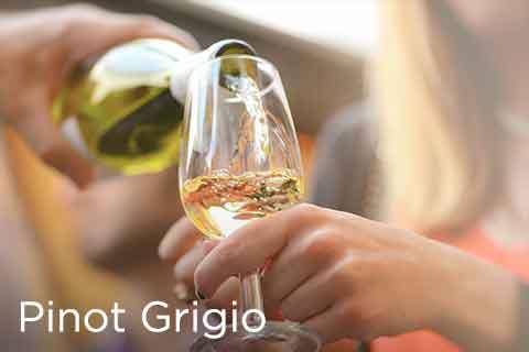 Pinot Grigio (Pinot Gris)